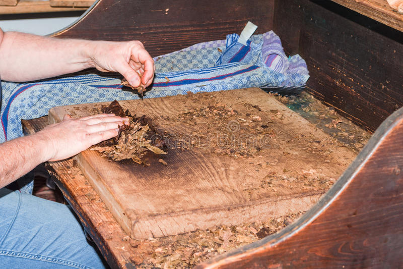 Fabrication traditionnelle des cigares photographie stock libre de droits