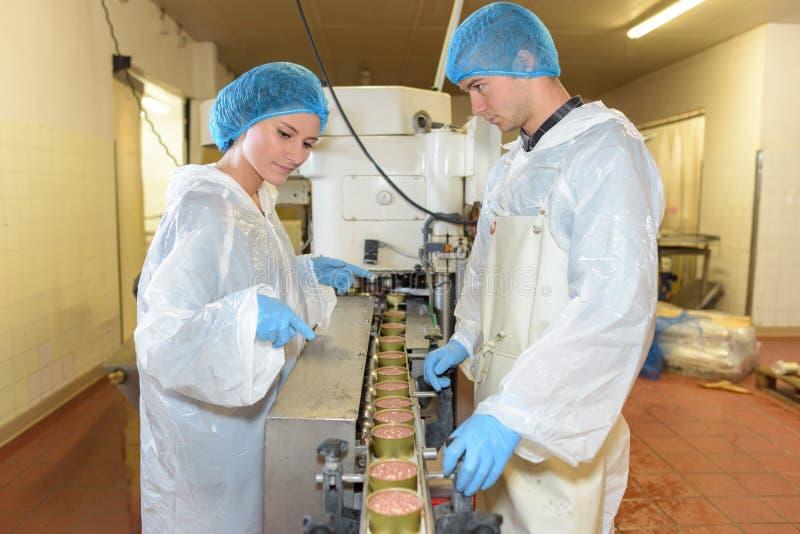 Fabrieksarbeider die voedsel controleren royalty-vrije stock fotografie