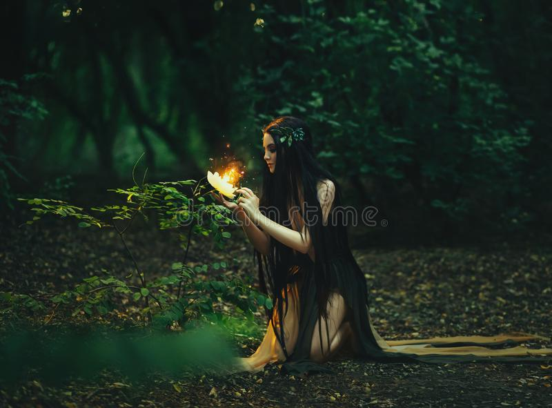 A fabulous; forest nymph Gyana stock images