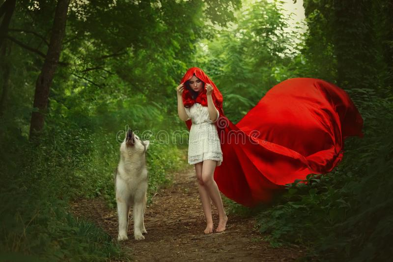 Fabulous girl with dark hair in short light white dress covers her head with hood of long bright red flying fluttering stock photography