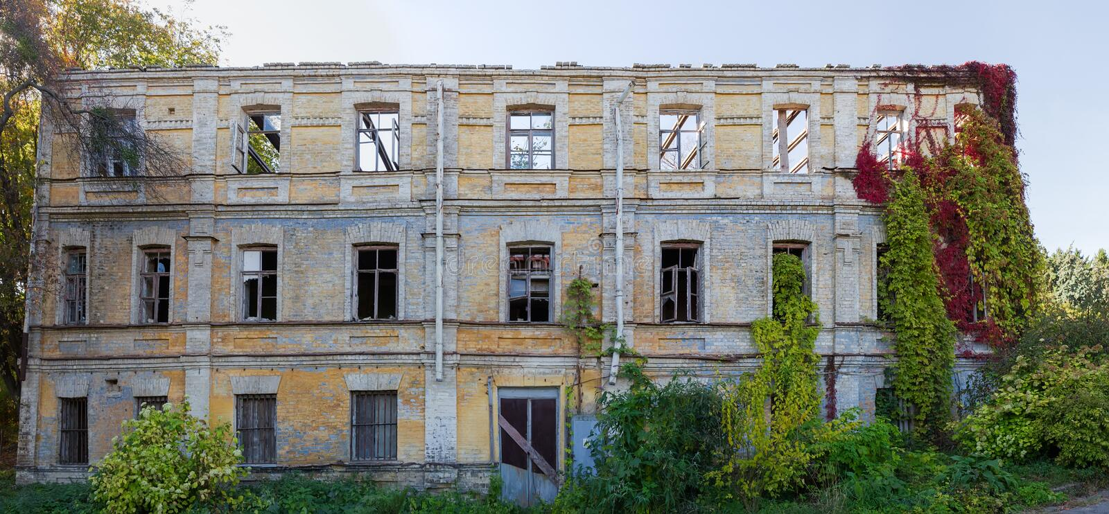 Facade of abandoned building with climbing plants on its walls. Facade of the abandoned building with wild climbing plants with bright varicolored autumn leaves stock image