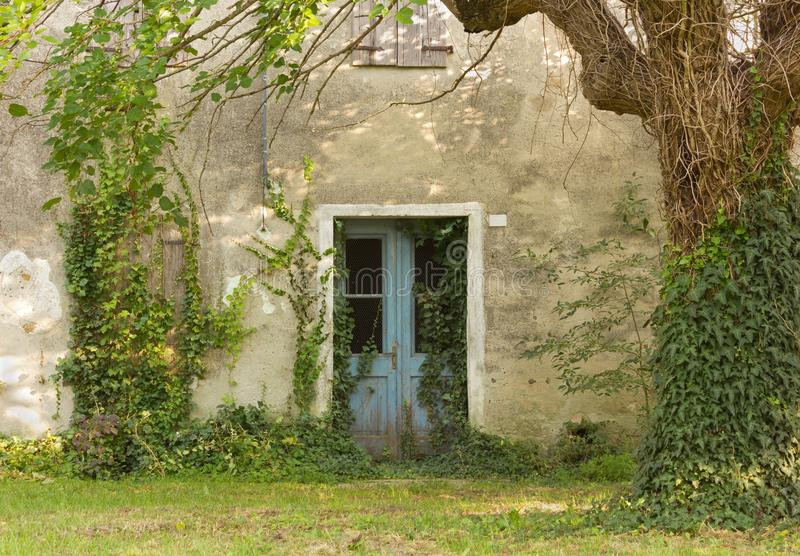 Abandoned Country House Exterior. Facade of an abandoned country house invaded by ivy royalty free stock image
