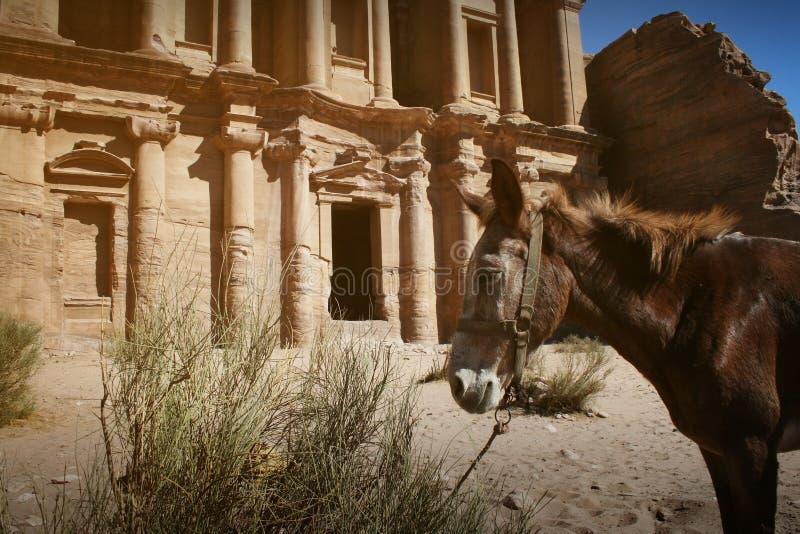 Facade av kloster på Petra, Jordanien arkivfoton