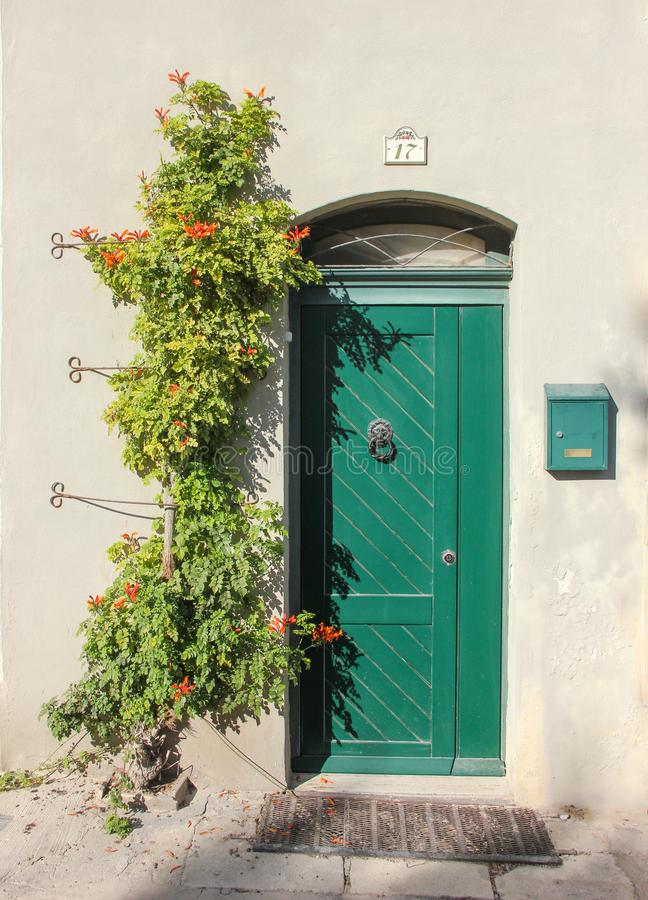 Facade with sweet old green door with lion doorknob and green mailbox, Near on the wall there is beautiful creeper. Flower. Number 17 is above the door royalty free stock image