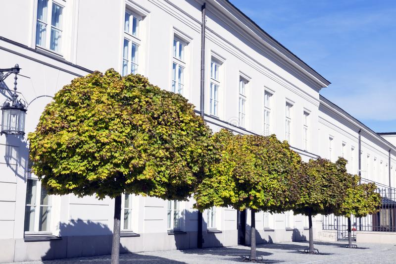 Facade of white house with trees on the street stock photography