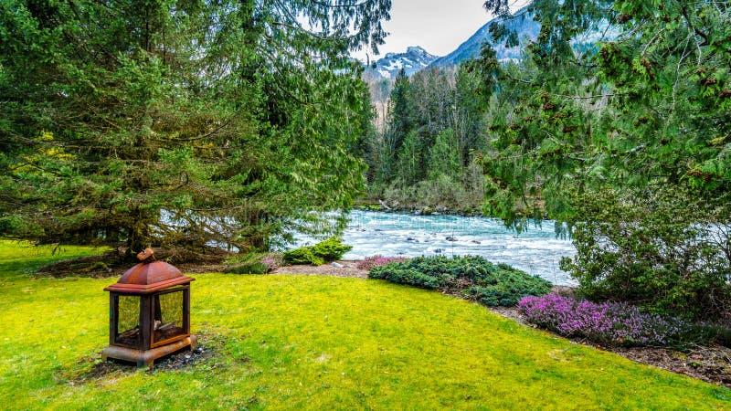 Faccia il giardinaggio sulla riva delle acque cristalline a flusso rapido del fiume di Chilliwack fotografia stock