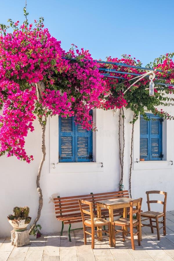 Facciata bianca della casa con le finestre ed i fiori blu tradizionali sull'isola di Andros, Cicladi fotografie stock libere da diritti