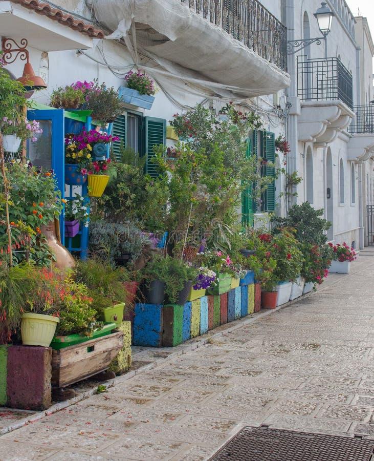 Facciata della Camera decorata con i vasi da fiori Via con costruzione bianca e la quantità di vasi da fiori Decorazione all'aper fotografia stock