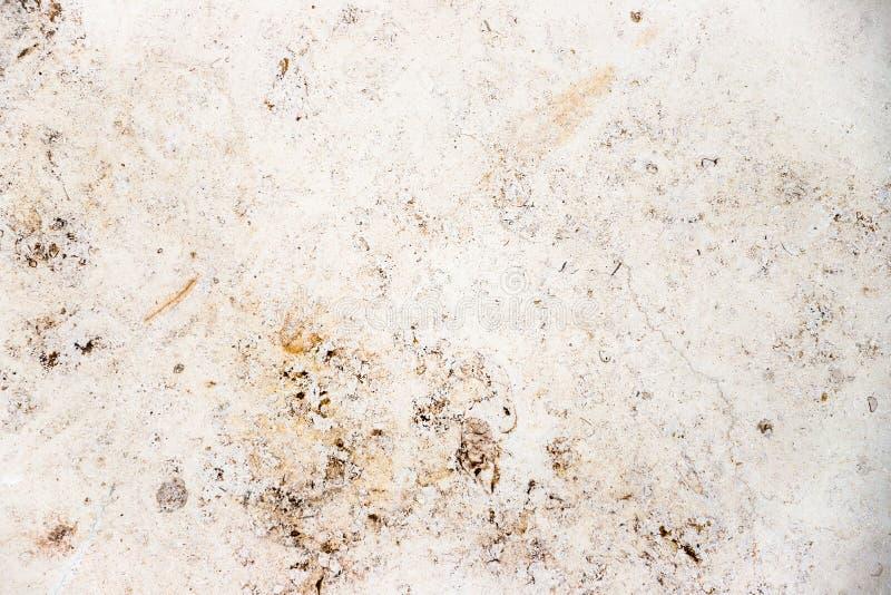 Facciata di marmo beige bianca della casa della parete di pietra con le imperfezioni ed i fori naturali come fondo di superficie  immagine stock