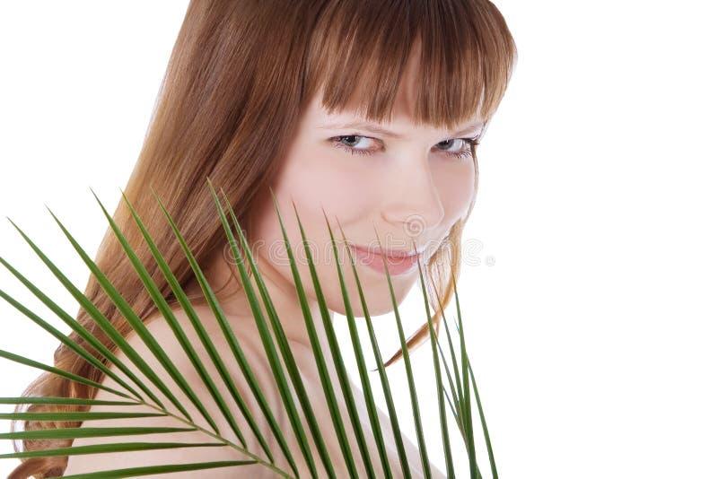 Face bonita da mulher que esconde atrás da folha imagens de stock