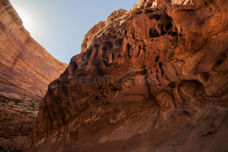 The Face of the Canyon royalty free stock image
