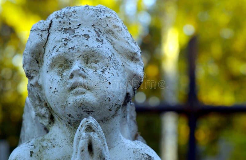 Face cinzelada concreta de um anjo fotografia de stock