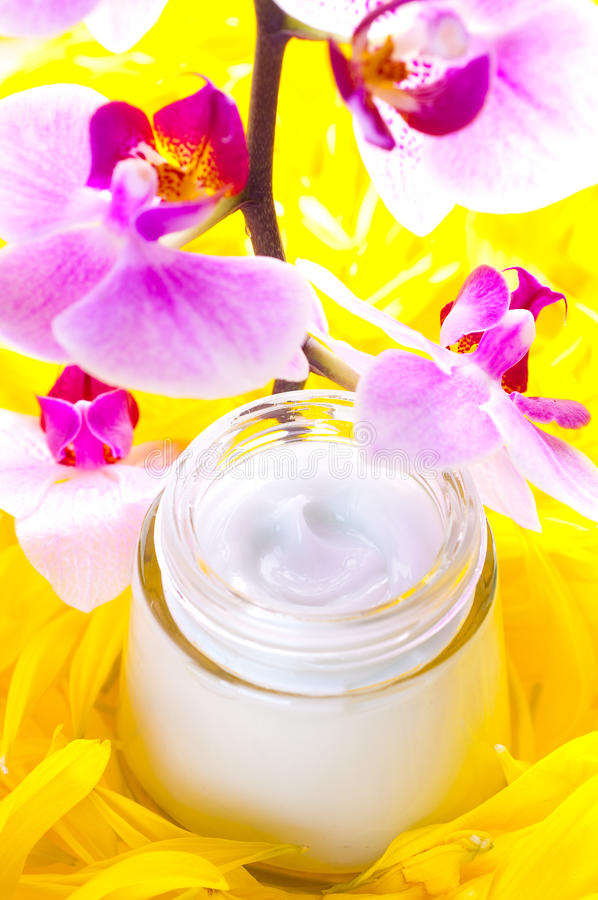 Download Face cream stock photo. Image of bank, gentle, petals - 13332242