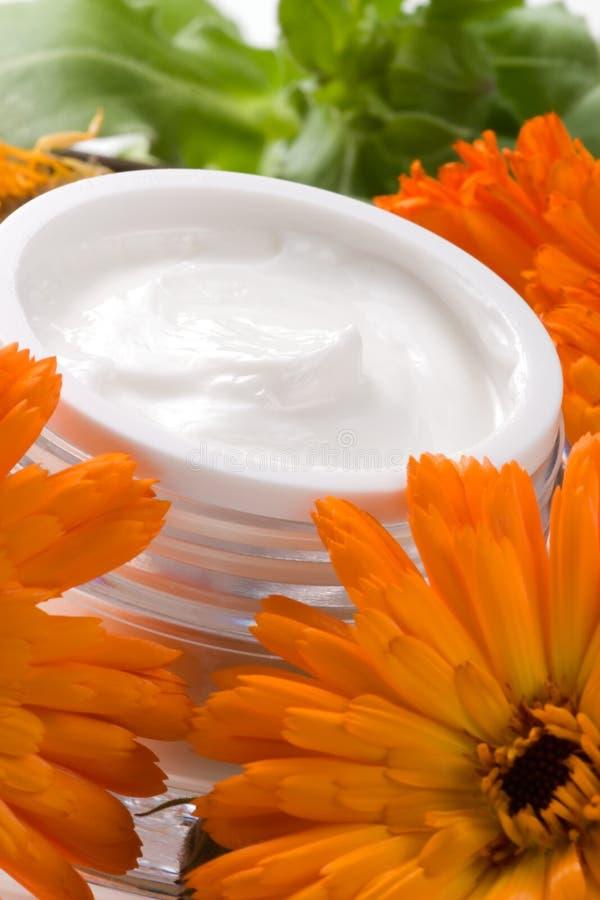 Face cream and calendula flowers royalty free stock photos