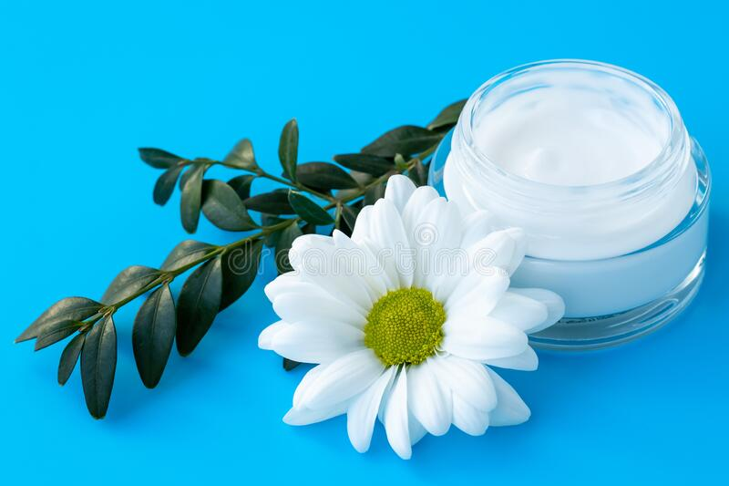Face cream in a glass bottle with white daisy flower on a blue background. Herbal natural cosmetic, skin care concept. Chamomile. Blossom and green branch stock photos