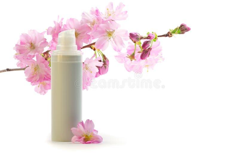 Face cream with sakura flowers. Daily skin care concept: face cream with sakura flowers royalty free stock photos