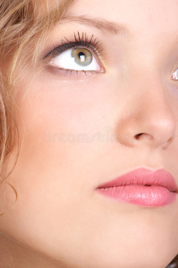 Face da mulher. imagem de stock