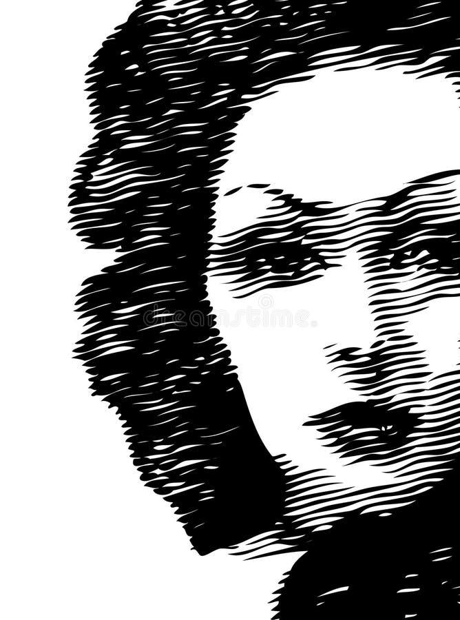 Face da mulher ilustração royalty free