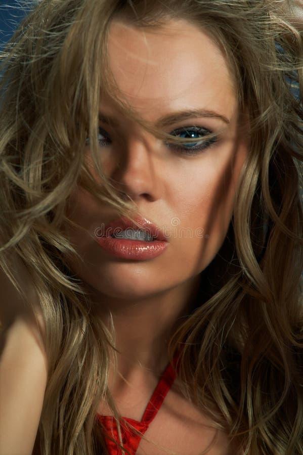 Face da mulher da beleza foto de stock
