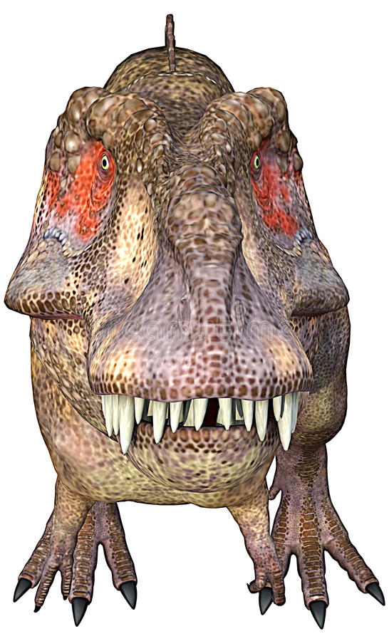 Face do frontal do Tyrannosaurus ilustração do vetor