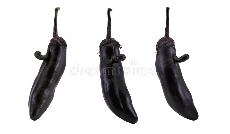Face on the eggplant. A quirk of nature, the face on the eggplant royalty free stock images