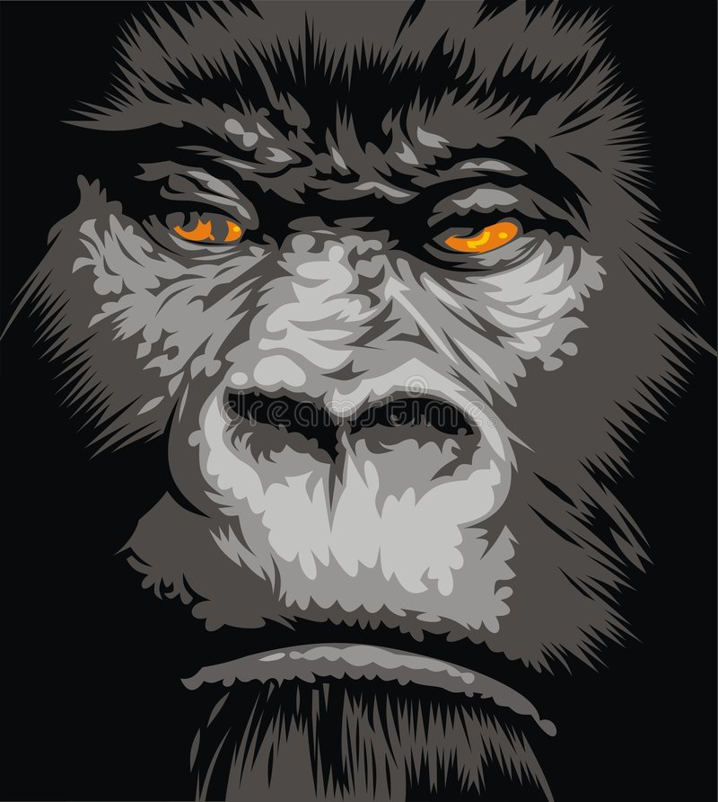 Face of gorilla royalty free illustration