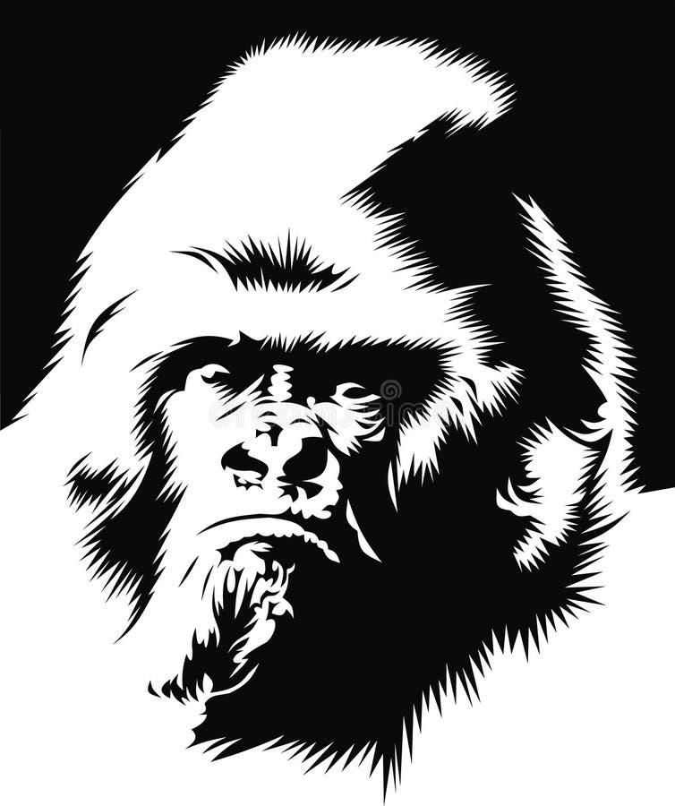 Download Face of gorilla stock vector. Image of genius, jungle - 9184332