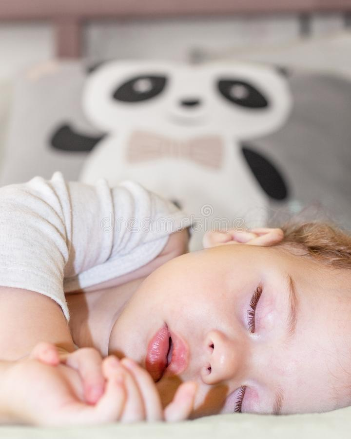 Face of a little girl sleeping with a panda, vertical portrait. Baby girl boy Caucasian daytime sleep stock image