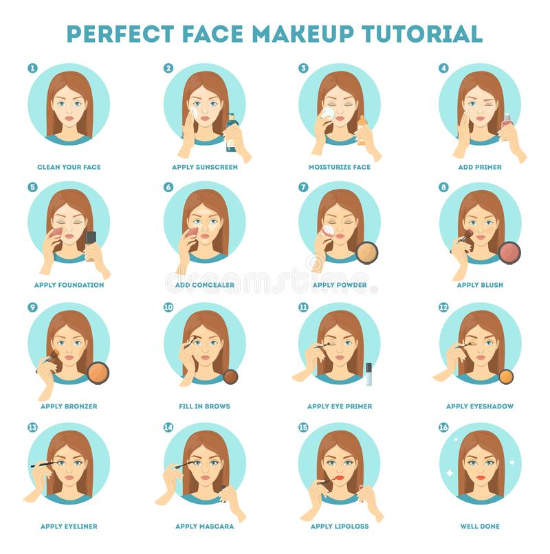 Face makeup tutorial for woman. Applying powder. Foundation and concealer on skin. Daily routine of face contouring. Guide for perfect make up. Isolated vector royalty free illustration