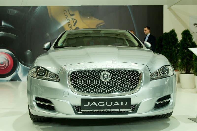 Face mask silver Jaguar XJ stock image
