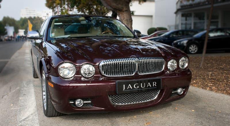 Face mask silver Jaguar XJ stock photography