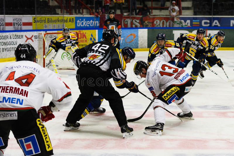 Face-off referee putting a puck between two ice hockey players in Ice hockey match in hockeyallsvenskan between SSK and MODO. Sodertalje, Sweden - January 15 royalty free stock images