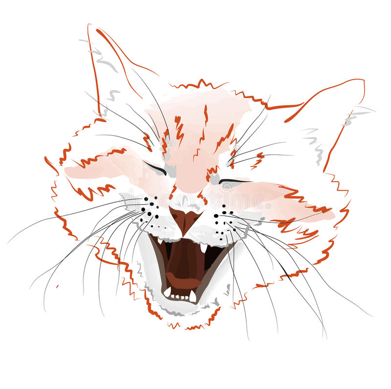 Download Face red cat stock vector. Illustration of face, up, image - 29541653