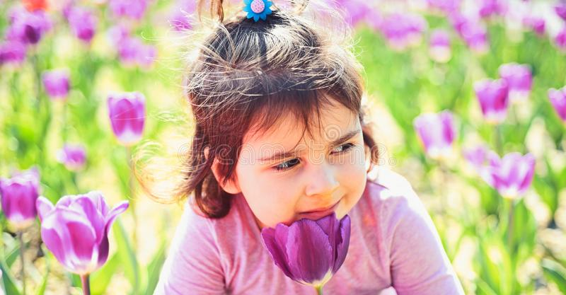Face and skincare. allergy to flowers. Small child. Natural beauty. Childrens day. Little girl in sunny spring. Summer. Girl fashion. Happy childhood royalty free stock photo