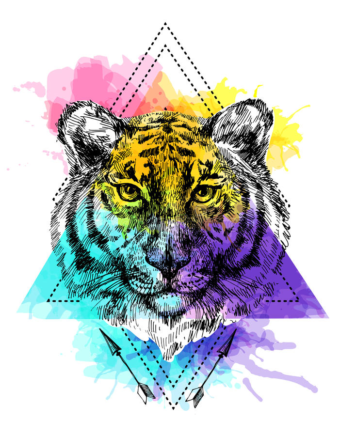 Face of tiger illustration vector illustration