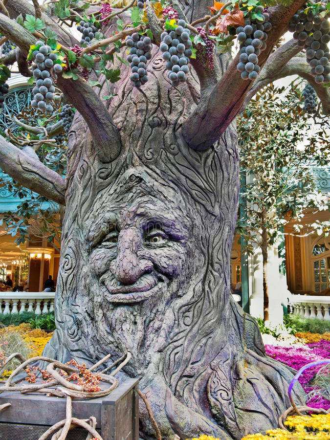 Download Face in the tree editorial stock image. Image of detail - 27878074