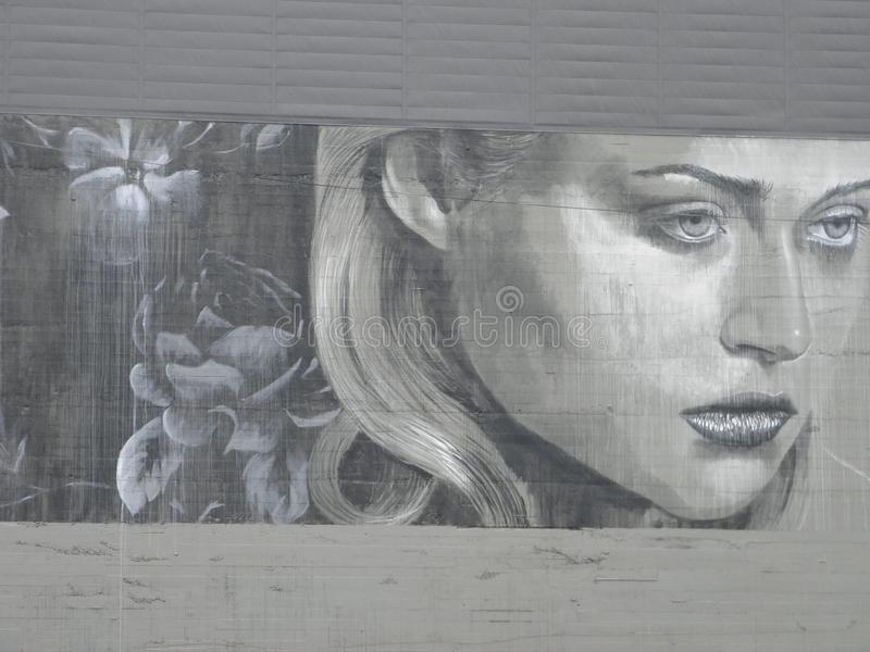 Female Face Mural in Portland, Oregon. This is the face of a woman in a mural on a building in Portland, Oregon stock photo