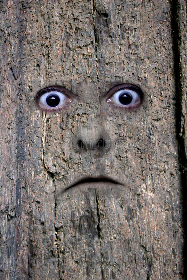 Download Face in wood 2 stock illustration. Image of mask, face - 713894