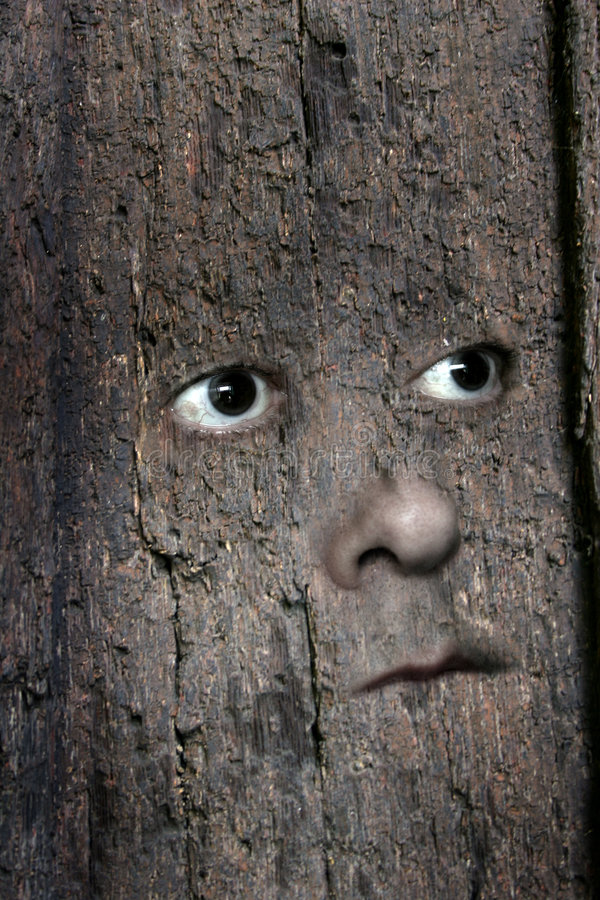Face in wood 3 royalty free stock photography