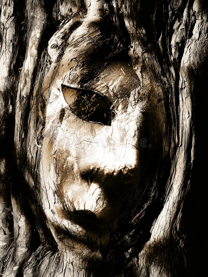 Face in wood royalty free stock photos