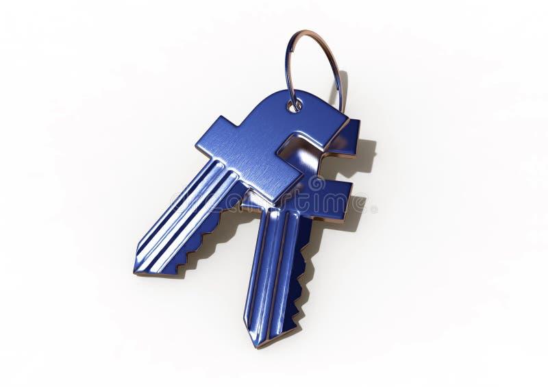 Facebook ochrony klucze ilustracja wektor
