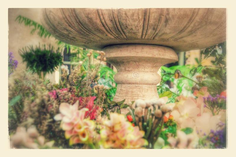 Facendo il giardinaggio nella città fotografie stock