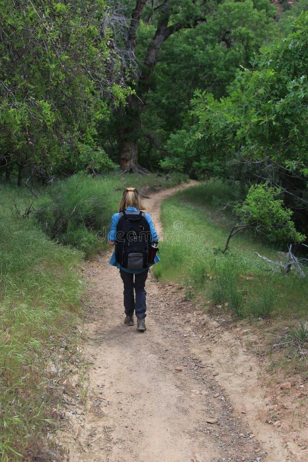 Facendo un'escursione attraverso Zion National Park fotografia stock