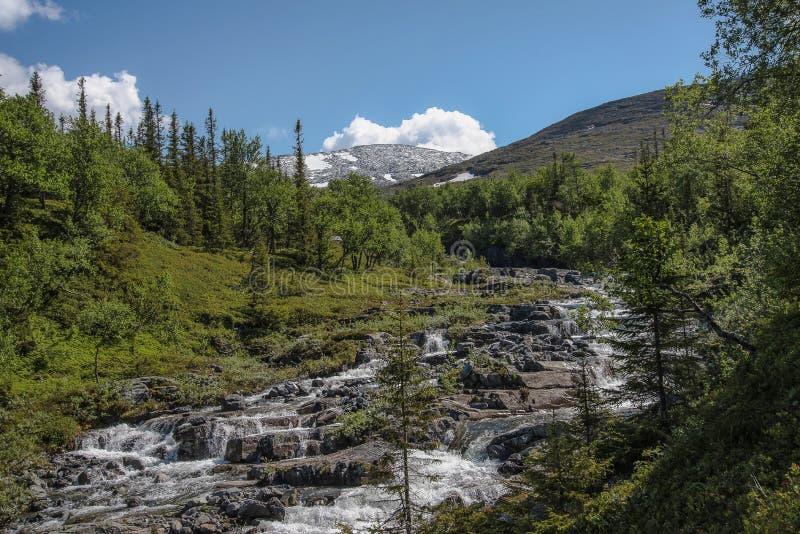 Facendo un'escursione le montagne di Anaris di paradiso - una riserva naturale Jamtland immagine stock
