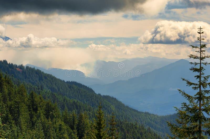 Facendo un'escursione le viste in cascata del ` s dell'Oregon variano fotografie stock libere da diritti