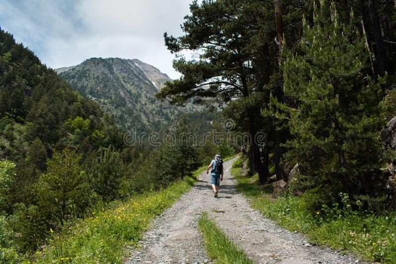Facendo un'escursione in montagne di estate a Parc Natural del Comapedrosa, Andorra fotografia stock libera da diritti