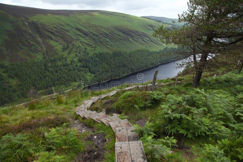 Facendo un'escursione nel parco nazionale delle montagne di Wicklow immagini stock libere da diritti