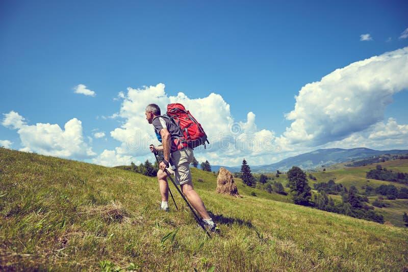 Facendo un'escursione nelle montagne di estate con uno zaino fotografie stock