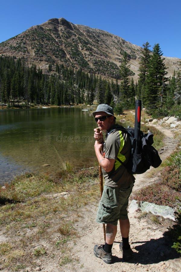 Facendo un'escursione nelle montagne di Uinta fotografia stock libera da diritti