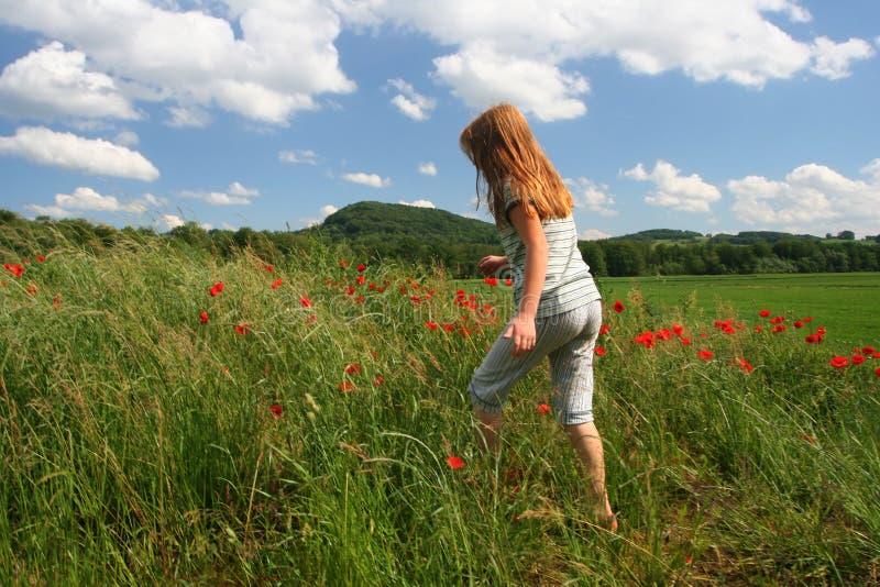 Facendo un'escursione sul campo dei papaveri fotografie stock libere da diritti